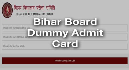 BSEB Dummy Admit Card